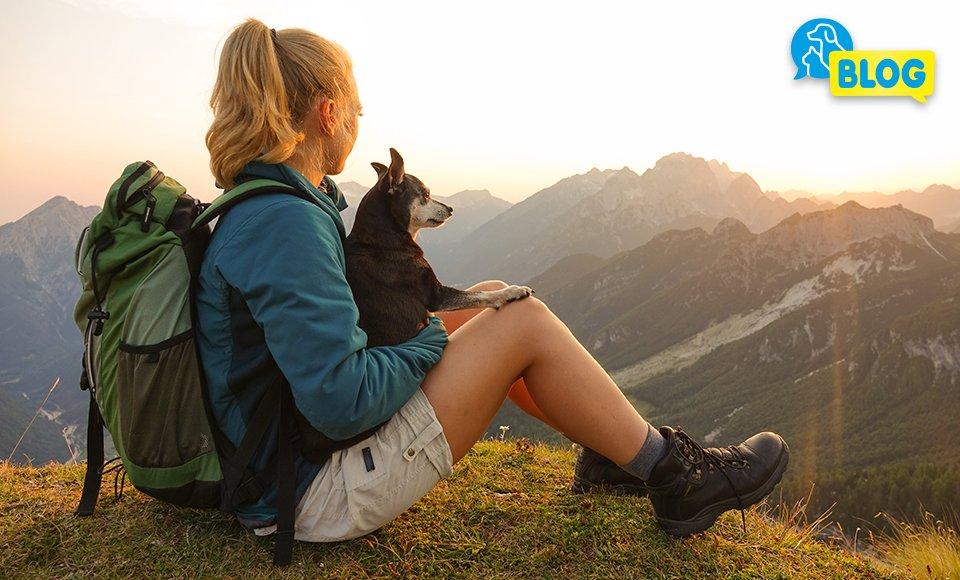 wandern mit hund - wanderausrüstung