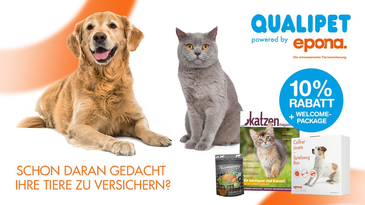 Hundeversicherung-Katzenversicherung-Epona