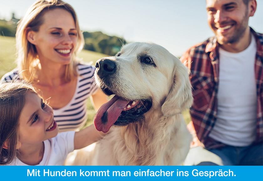 Hund als soziales Bindeglied