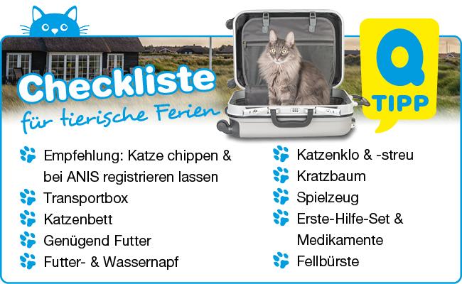 Checkliste für Ferien mit Katze